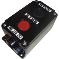 Пост управления кнопочный ПКЕ-222-2 У3 - фото